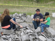 Family of collectors mining their pile of blocks of shale during 2017 Dig with the Experts.