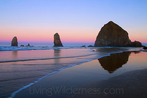 Haystack Rock, a very prominent sea stack at Cannon Beach on the Oregon Coast. At 235-feet tall, it is the world's third-tallest sea stack.